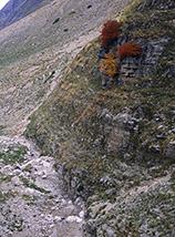 """""""Le tre sentinelle"""" (al piccolo canyon nei pressi dello Stazzo di Solagne)."""